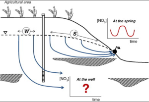 Figure 3. Schematic of groundwater flow off of an agricultural site