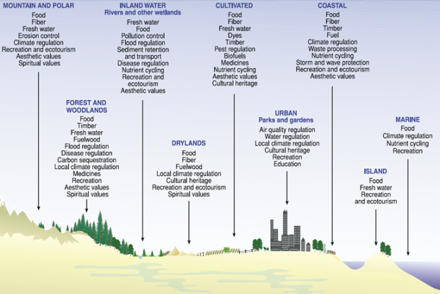 Illustration of landscapes and their associated ecosystem services, where parks and gardens are an extremely valuable sub-unit providing services in the Urban landscape.
