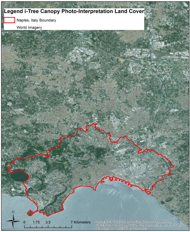 The i-Tree Canopy product used in photo-interpretation. Naples is bounded by the red polygon, and the area surrounding Naples includes the Mediterranean to the south, and mixed uses to the north.